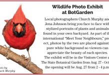 Wildlife Photo Exhibit