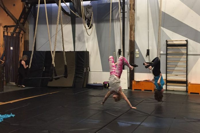 Learning a new trick on the trapeze