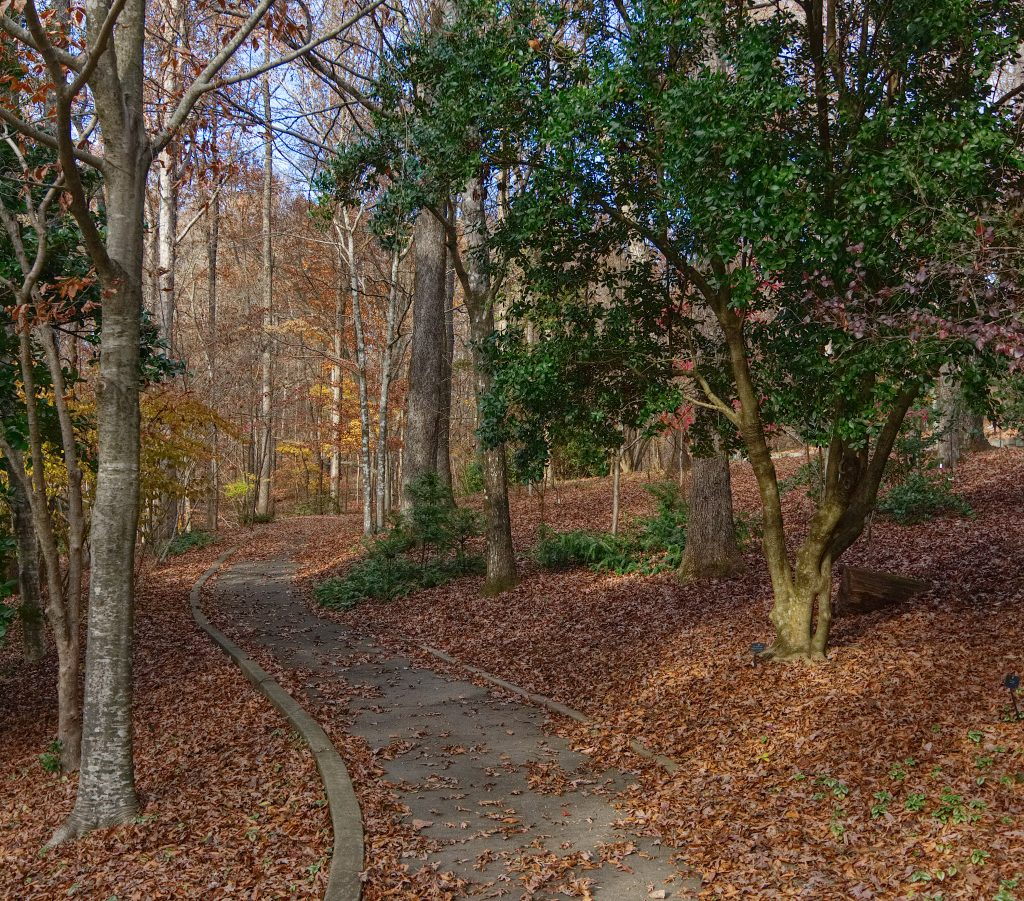 Crunch the leaves underfoot by Don Hunter