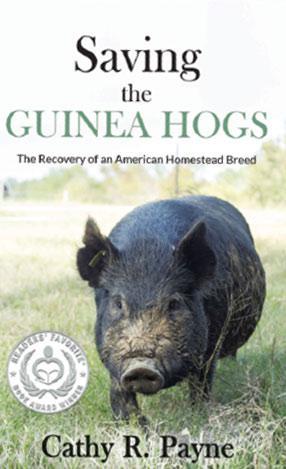 Saving the Guinea Hogs