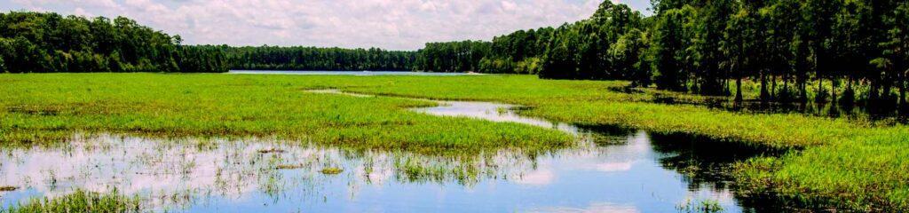Laura S. Walker State Park's lake.