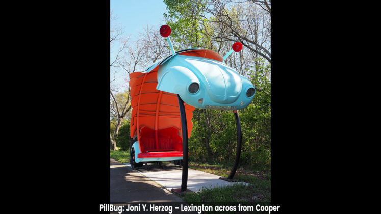 PillBug- Joni Y. Herzog – Lexington